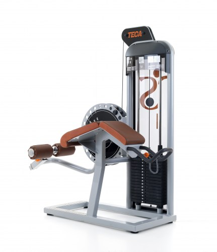 TECA SP110 - Leg curl machine