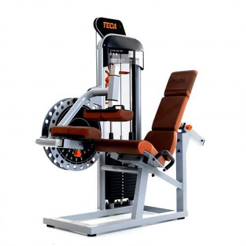 TECA SP210 Sitting leg curl