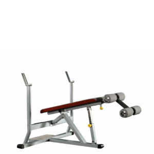 TECA FP430-P Decline bench press_product