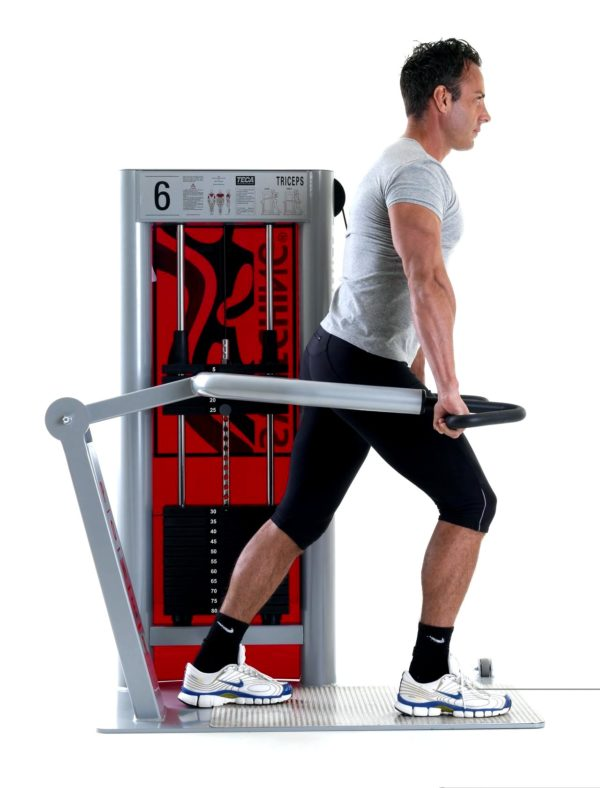 TECA PSW06 Power Switching Triceps fitness machine
