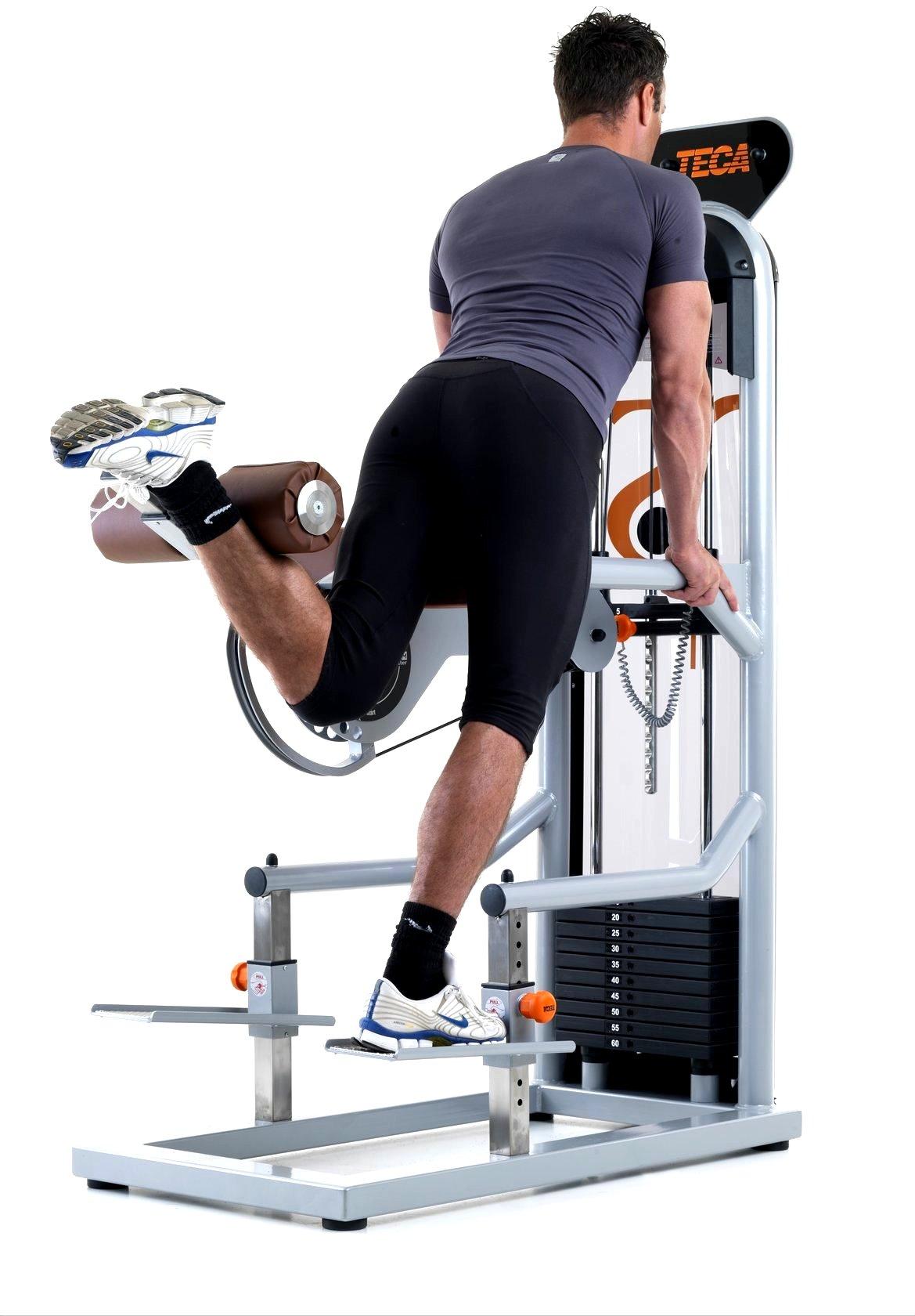 Medium Gluteus Teca Fitness Attrezzi Palestra E Attrezzi Fitness