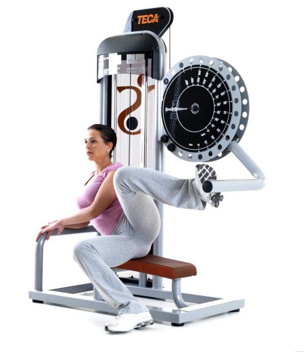 TECA PS SP310 Gluteus press gym equipment