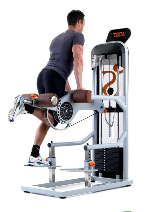 TECA SP 120 Standing leg curl fitness machine