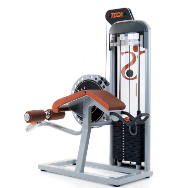 TECA SP110 - Leg curl machine_product