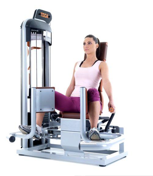TECA SP160 Abductor fitness machine