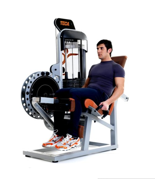 TECA SP210 Sitting leg curl gym equipment