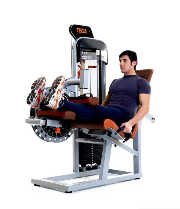 TECA SP210 Sitting leg curl fitness machine