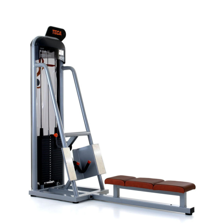 Pulley Teca Fitness