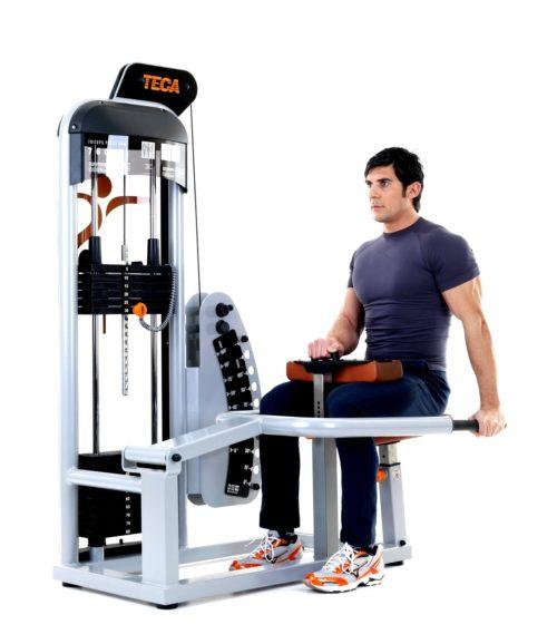 TECA SP760S Tricep press machine