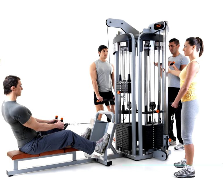 TECA SP782 Triceps Pulley multiuse station machine