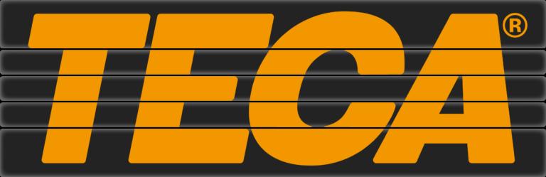 Teca Fitness Logo